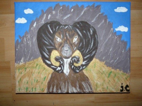 Mouflon !